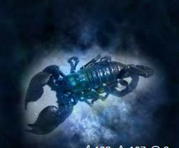 Scorpion voyance corse1